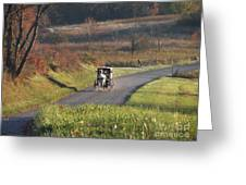 Amish Country Horse And Buggy In Autumn Greeting Card