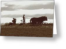 Amish Farmer 2 Greeting Card