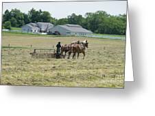 Amish Girl Raking Hay Photo Greeting Card