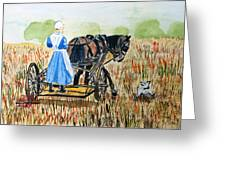 Amish Girl With Buggy Greeting Card