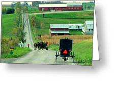 Amish Horse And Buggy Farm Greeting Card