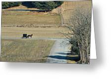 Amish Horse And Buggy On A Country Road Greeting Card
