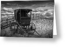 Amish Horse Buggy In Black And White Greeting Card