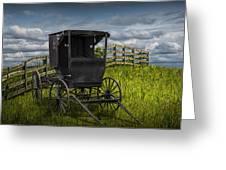 Amish Horse Buggy Greeting Card