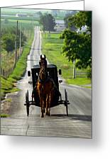 Amish Morning Commute Greeting Card