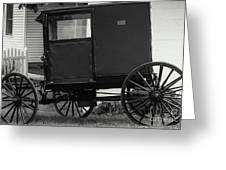 Amish Wagon _pa Greeting Card