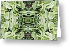 Ammonoosuc Green Greeting Card