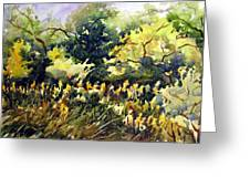 Amongst The Goldenrods Greeting Card