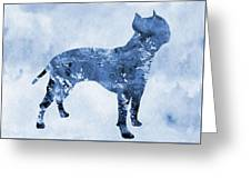 Amstaff-blue Greeting Card