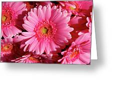 Amsterdam In Pink Greeting Card