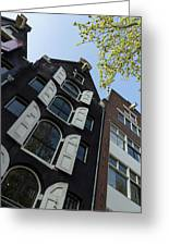 Amsterdam Spring - Arched Windows And Shutters - Right Greeting Card