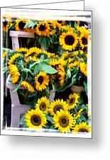 Amsterdam Sunflowers Greeting Card