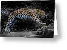 Amur Leopard On The Hunt Greeting Card