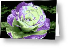 An Abstract Beauty Greeting Card