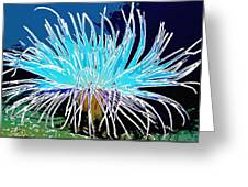 An Abstract Scene Of Sea Anemone 1 Greeting Card
