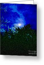 An Affair With Isolation_forest Greeting Card