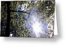 An Alabama Sun Greeting Card