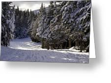 An Alpine Ski Trail On Wildcat Mountain Greeting Card