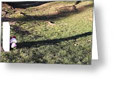 An Arlington Grave With Flowers And Shadows Greeting Card