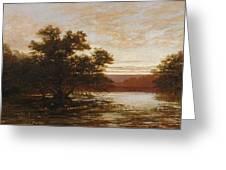 An Australian Mangrove. Ebb Tide Greeting Card