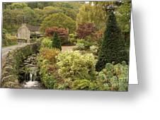 An Autumn Garden  Greeting Card