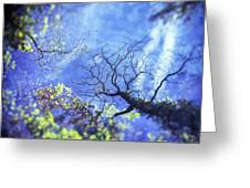 An Early Autum Day Greeting Card