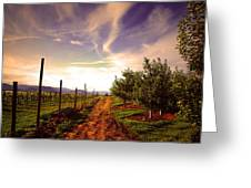 An Evening By The Orchard Greeting Card