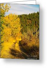 An October Path   Greeting Card