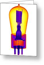 An X-ray Of Historic Audion Vacuum Tube Greeting Card
