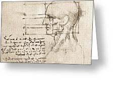 Anatomical Drawing By Leonardo Da Vinci Greeting Card