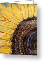 Anatomy Of A Sunflower Greeting Card