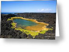 Anchialine Pond Greeting Card