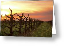 Ancient Golden Vines And Mustard Greeting Card