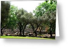 Ancient Ruins Temple Grounds 2 Greeting Card