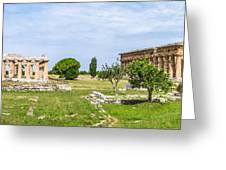 Ancient Temple At Famous Paestum Archaeological, Italy Greeting Card