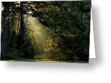 And A New Day Will Dawn... Greeting Card
