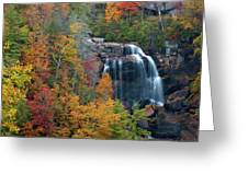 And The Leaves Will Fall Greeting Card
