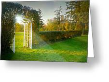 And The Trellis Greeting Card