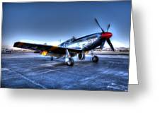 And Who Could Forget Betty Jean.  P51c Nl25imx  Greeting Card