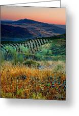 Andalucian Landscape  Greeting Card