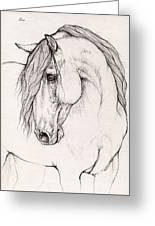 Andalusian Horse Portrait 2015 12 08 Greeting Card