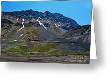 Andean Journey Greeting Card