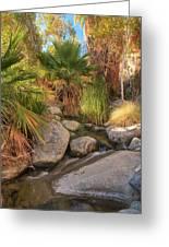 Andreas Canyon Babble Greeting Card