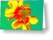 Andy Warhol Inspired Yellow Flower Greeting Card