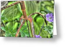 Anemone And The Rusty Bike Greeting Card