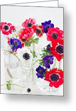 Anemone Flowers  Greeting Card