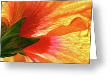 Angel Brushstrokes  Greeting Card