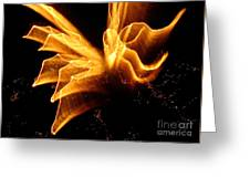 Angel In The Sky Fireworks Greeting Card