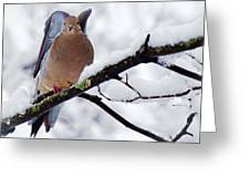 Angel Mourning Dove Greeting Card
