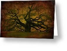 Angel Oak 3 Charleston Greeting Card